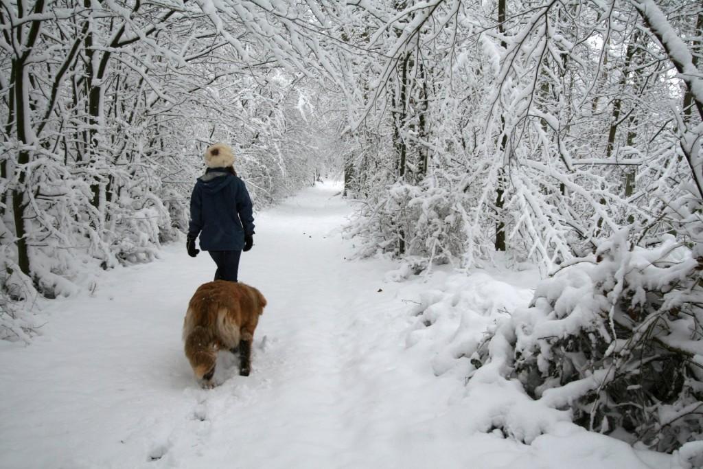 Prendre l'air en hiver